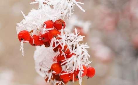 Аномальные морозы на рождество 2017: МЧС предупреждает- в Москве 7 января до -35