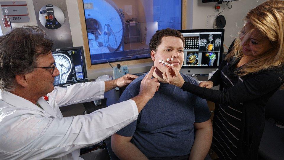 Разработан новый метод восстановления мозгового кровообращения после инсульта
