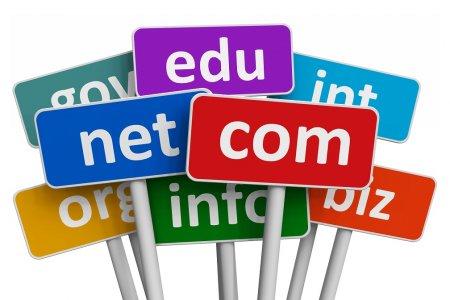 SEO: Как проверить доменное имя