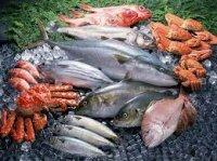 Какие виды рыб самые питательные и полезные для здоровья?